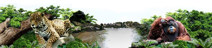 안사모봄소풍2.jpg